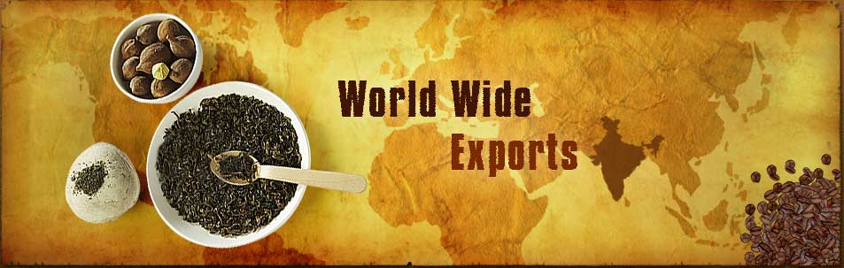 J and T EXPORTS
